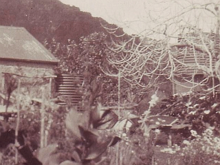 Williams House Paihia - a 1920s picture of the pumphouse showing the water tank on the roof